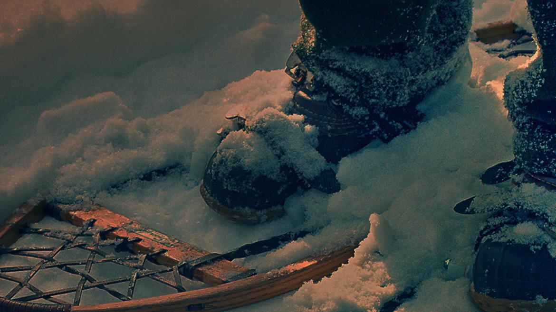 Ciaspolata al chiar di luna | 8 febbraio 2020